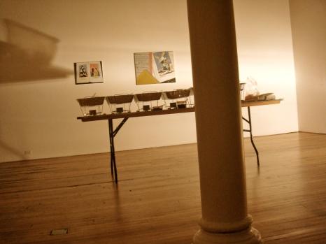 art gallery Manhattan