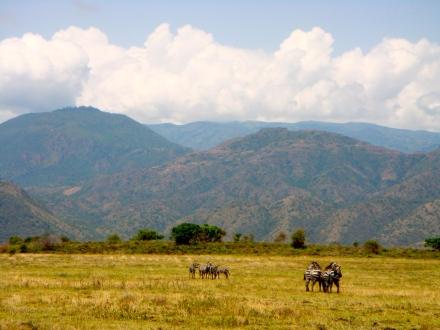 Nechisar Nationalpark